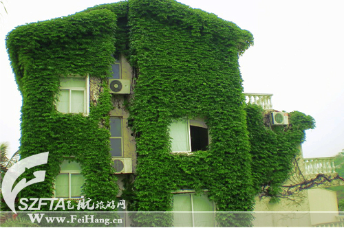 惠州三角洲岛住宿的别墅