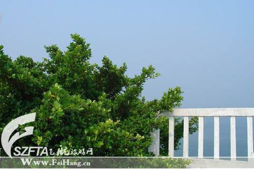 三角洲岛别墅群侧面 远望三角洲海水出奇的清澈
