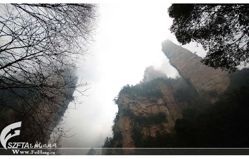 张家界森林公园包括黄石寨,金鞭溪,腰子寨,沙刀沟,琵琶溪等5个旅游