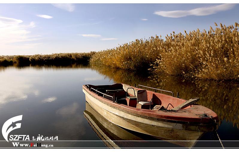 纳林湖的风光