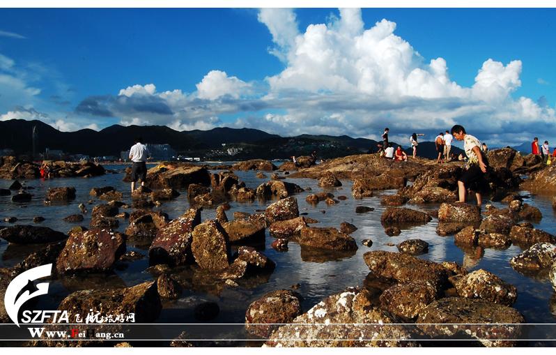 大梅沙礁石