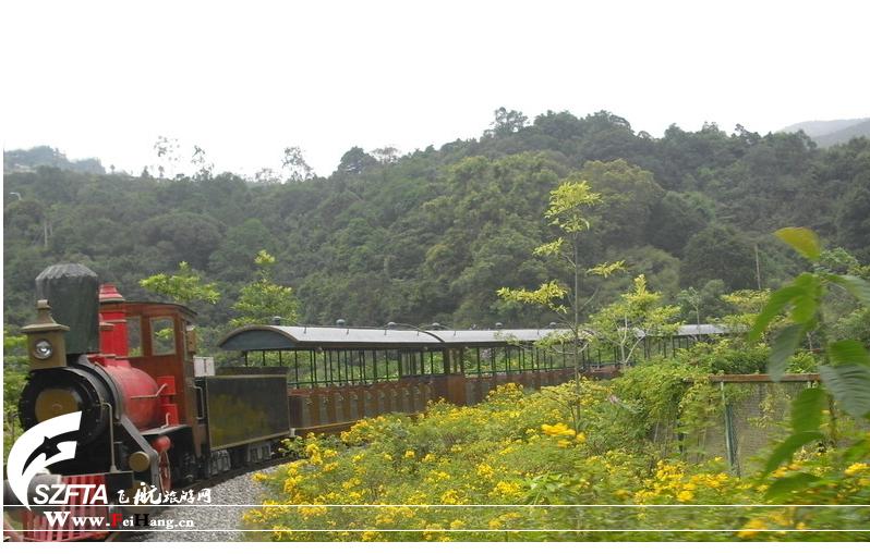 深圳野生动物园的小火车