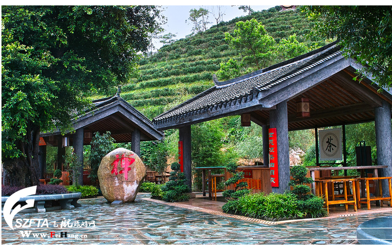 华城桥风景