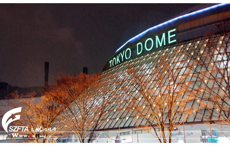 日本国立棒球馆